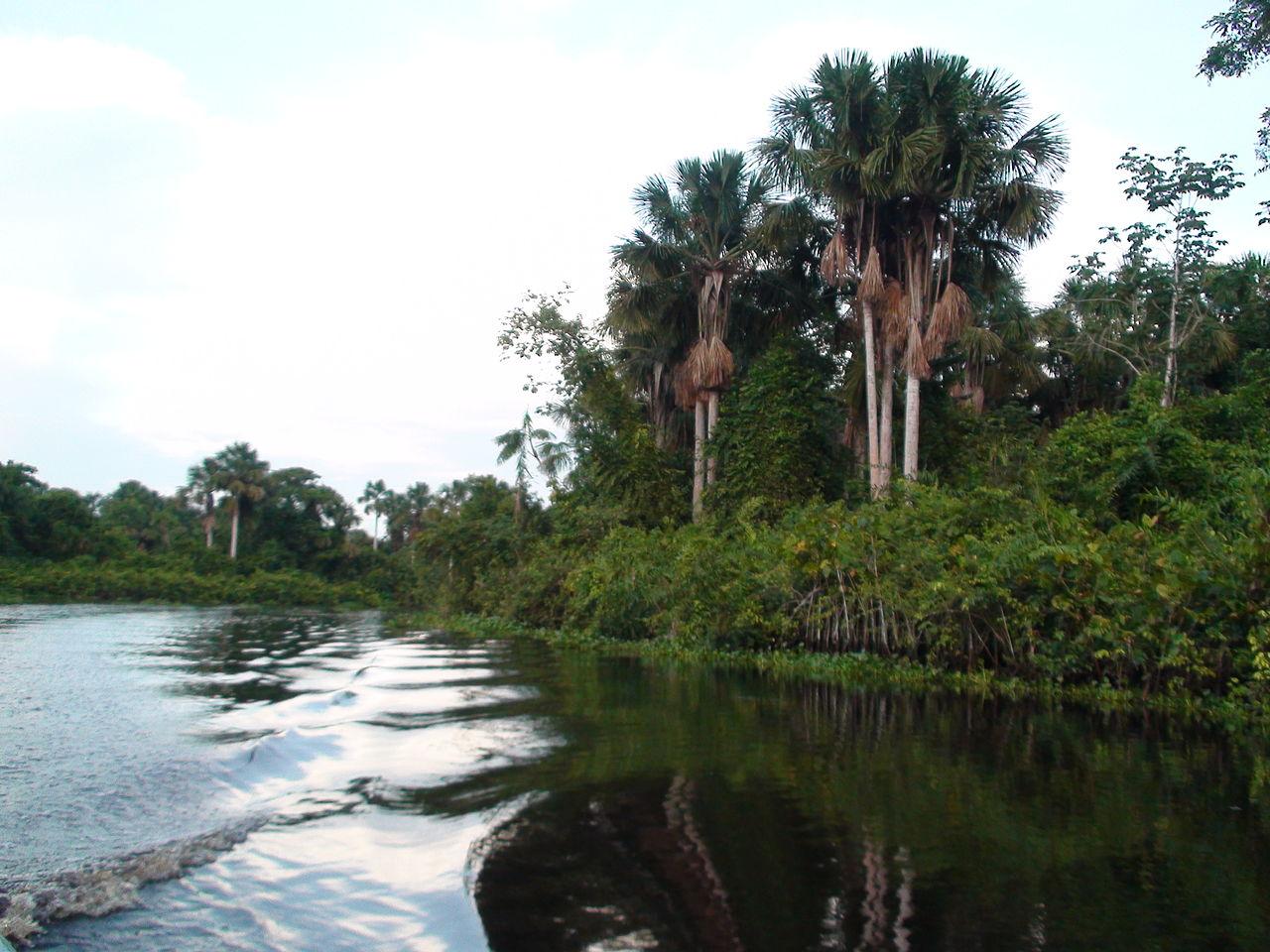 1280px Delta del Orinoco 110514 3 - Venezuela y sus riquezas naturales