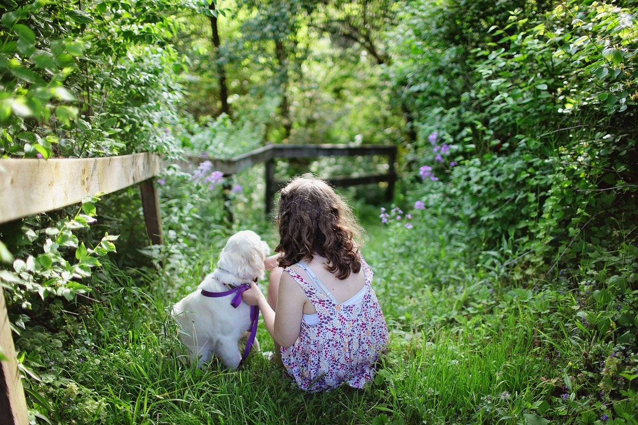 child g0cdbc839e 1280 - Los beneficios de cuidar de mascotas para alcanzar el bienestar