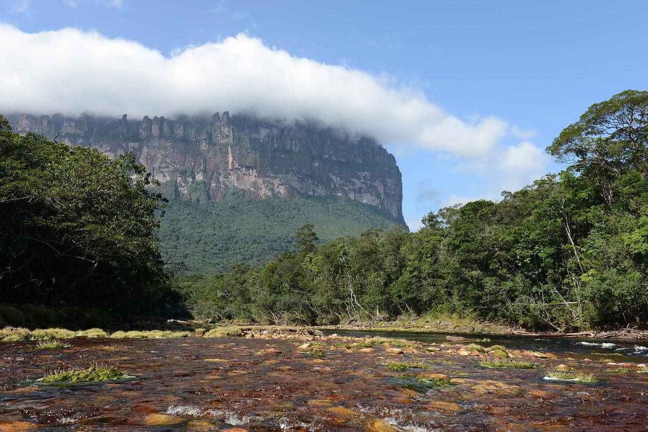 nature 3690643 1280 - El Orgullo de nacer en Venezuela