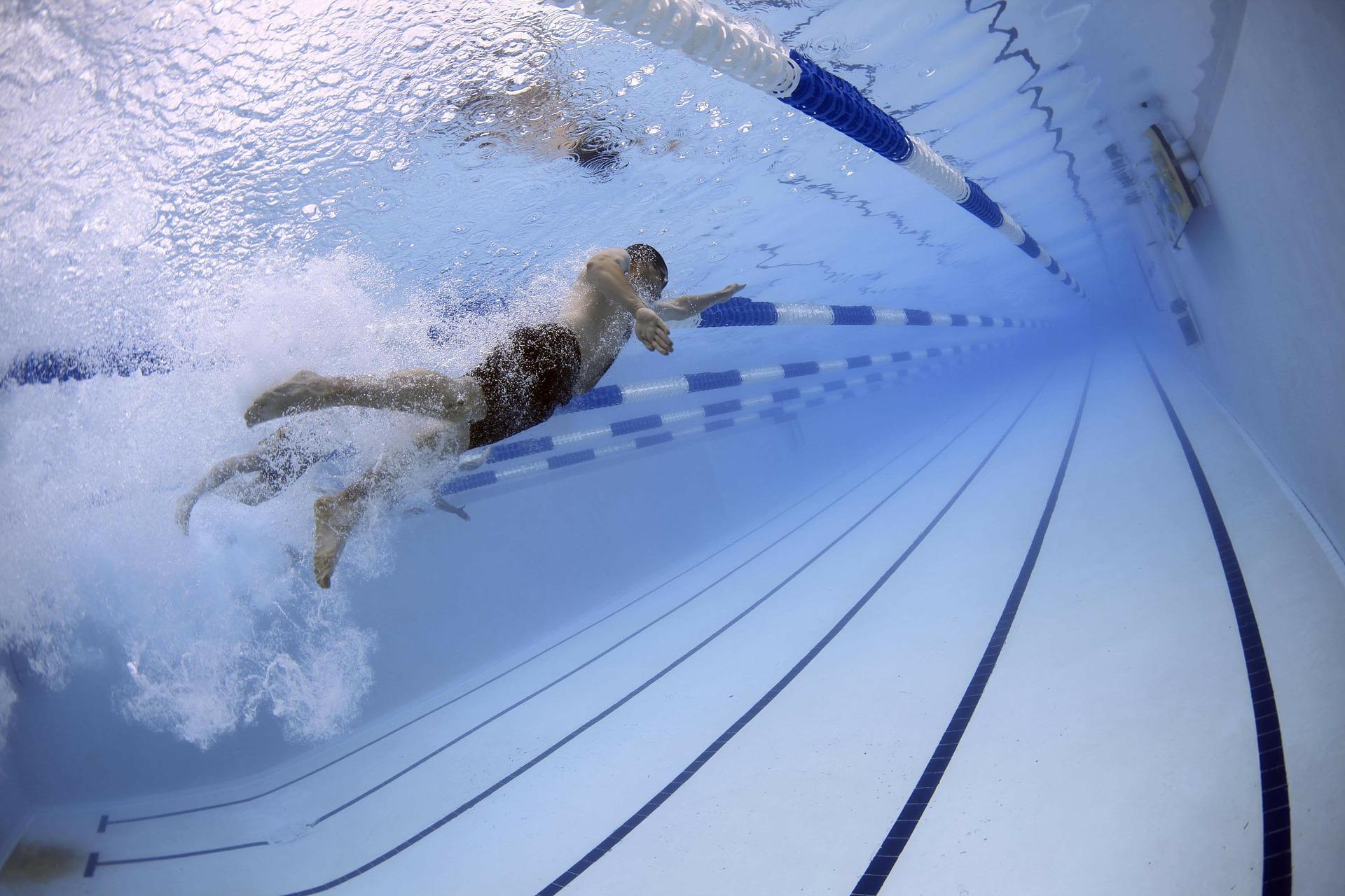 swimmers 79592 1920 - Celebremos el Día Internacional del Deporte para el Desarrollo y la Paz