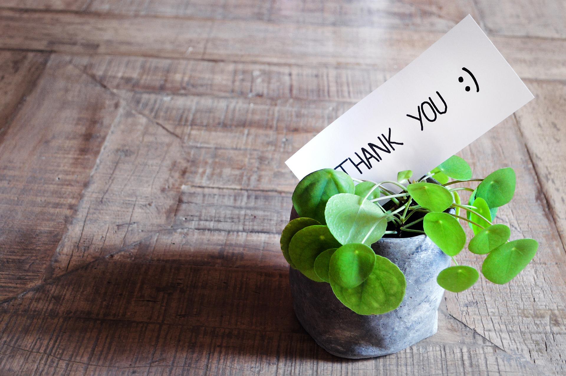 thank you 3690115 1920 - Gratitud: por qué es importante fomentar este valor en los niños